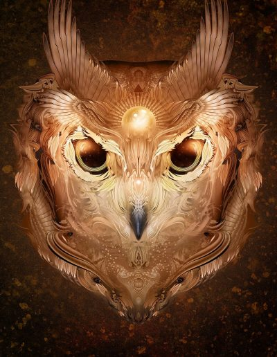 Copper Owl