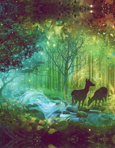 Secret of The Emerald Forest | Mugwort Designs